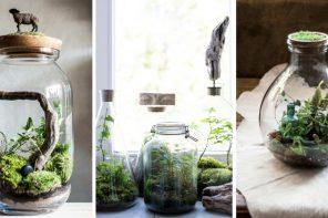 Poznaj Forest Forever – niesamowite lasy w słoikach i butelkach, które możesz trzymaćw domu