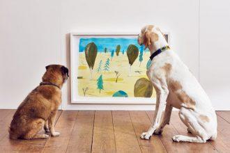 wystawa dla psów