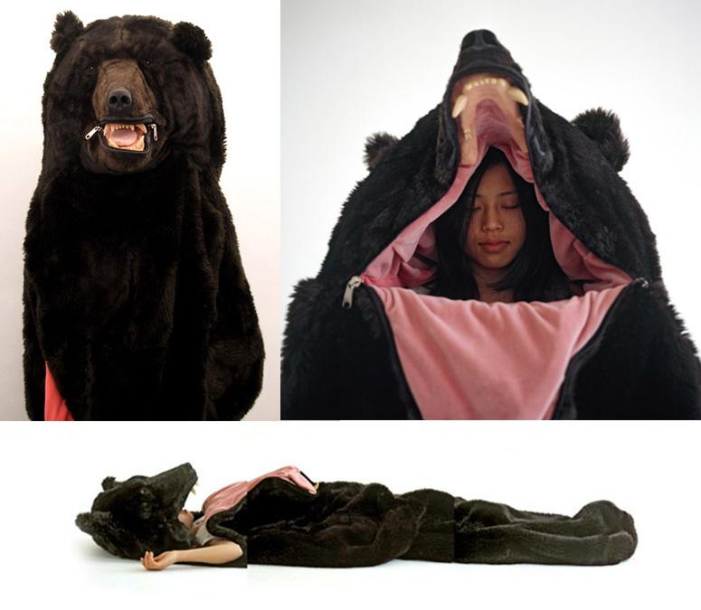 niedźwiedź, śpiwór