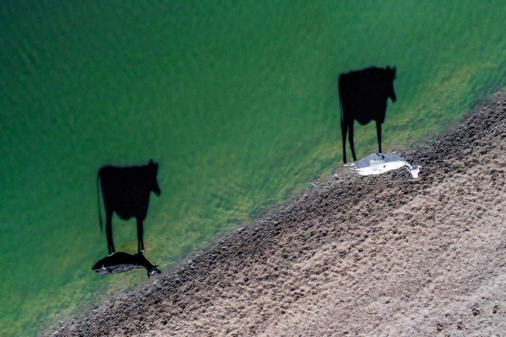Najlepsze zdjęcia z drona
