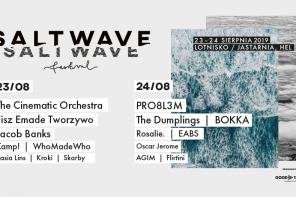 Pierwsza edycja festiwalu Salt Wave już w ten weekend!