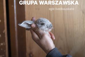 grupa warszawska premiera