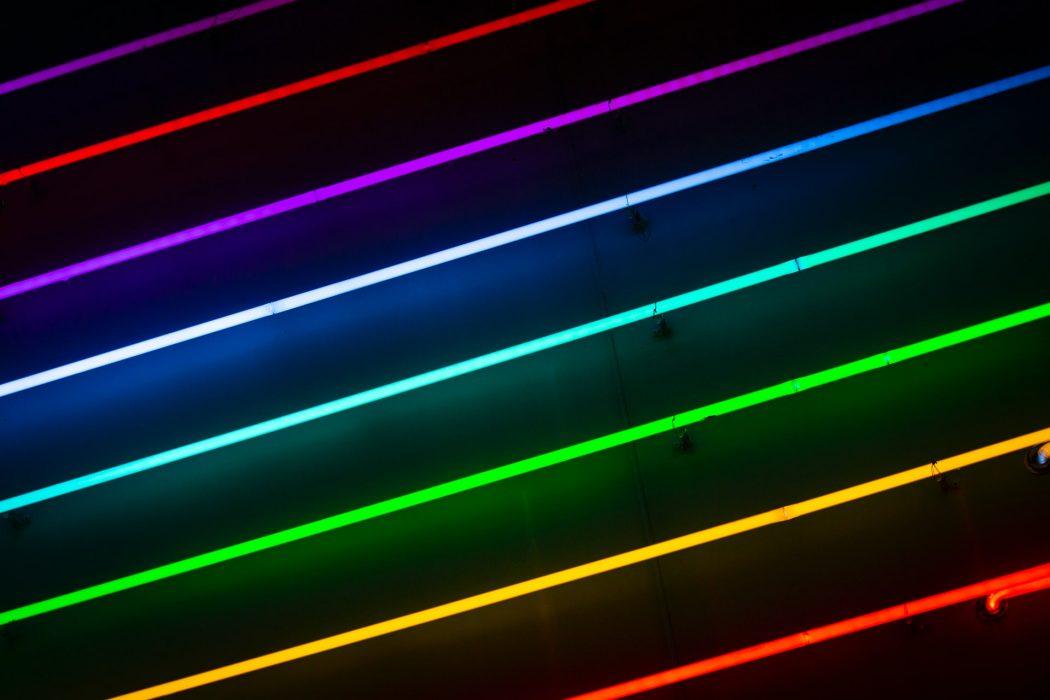 neon siatkarka warszawa