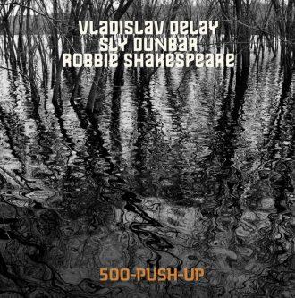 Vladislav Delay 500PushUp recenzja