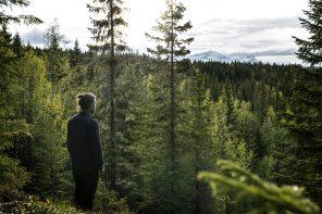 Żyj w rytmie natury fragment książki Markusa Torgeby