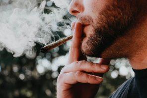 Luksemburg jako pierwszy kraj w Europie zalegalizuje uprawę marihuany do celów rekreacyjnych!